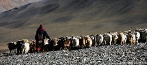 Spenden Sie Hoffnung für Tibet