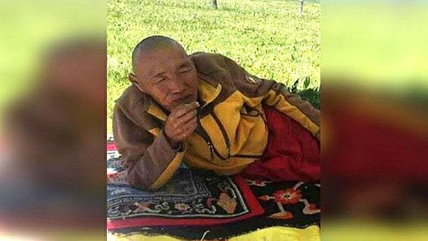 Alter Mönch liegt auf einem Kissen auf einer Wiese